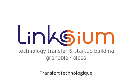 Logo Linksium